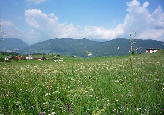 Malosco in Val di Non